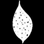 Logo ROUAvision